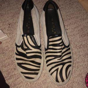 Madison zebra 39 9
